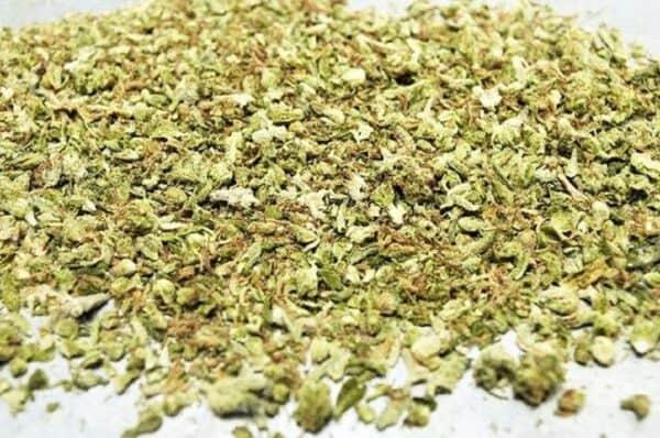 Weed Delivery | London, ONT Marijuana Dispensary